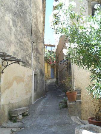 le village 1 (5)