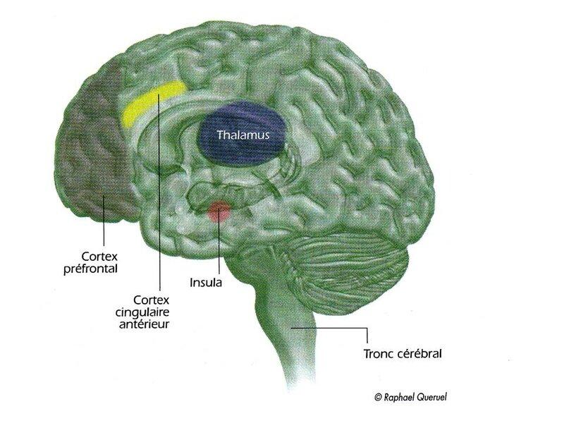 Hypnose image