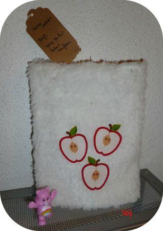 housse pomme verso