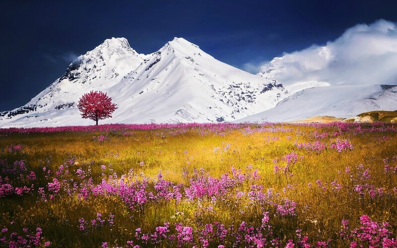 autumn_fields_alps_mountains-wide