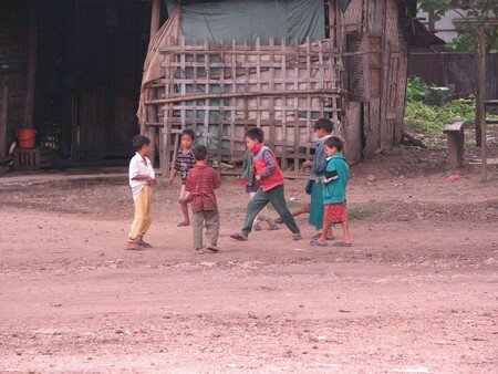 Birman_100___28_