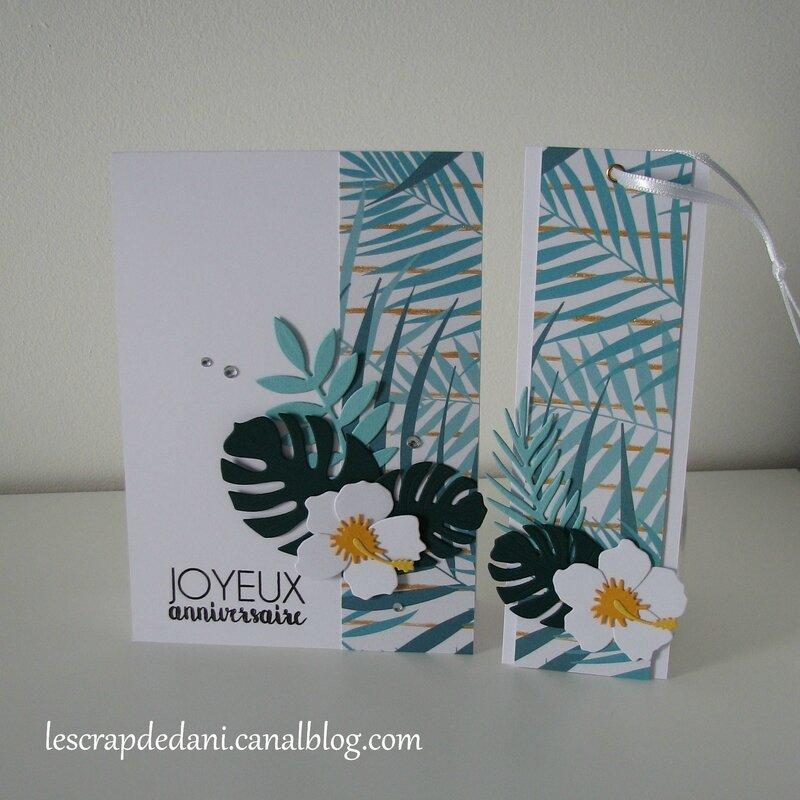 dani set1 carte & marque-page hibiscus