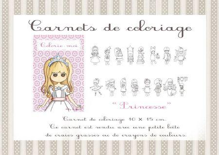 23 carnets colo princesse