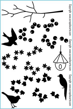 Un_oiseau_sur_la_branche