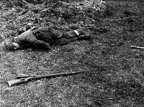 La bataille des Haies. 13 juin/24 juillet 1944. 72104297