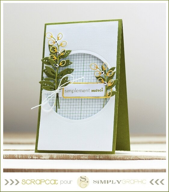 carte merci verte et jaune1