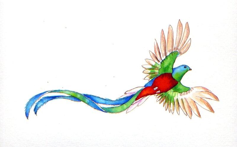 Quetzal-17