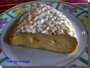 Brie_de_Melun