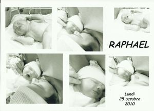 raphaël (2)
