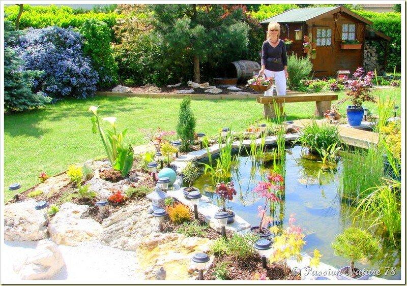 Le bassin...Mon petit coin de paradis (31)