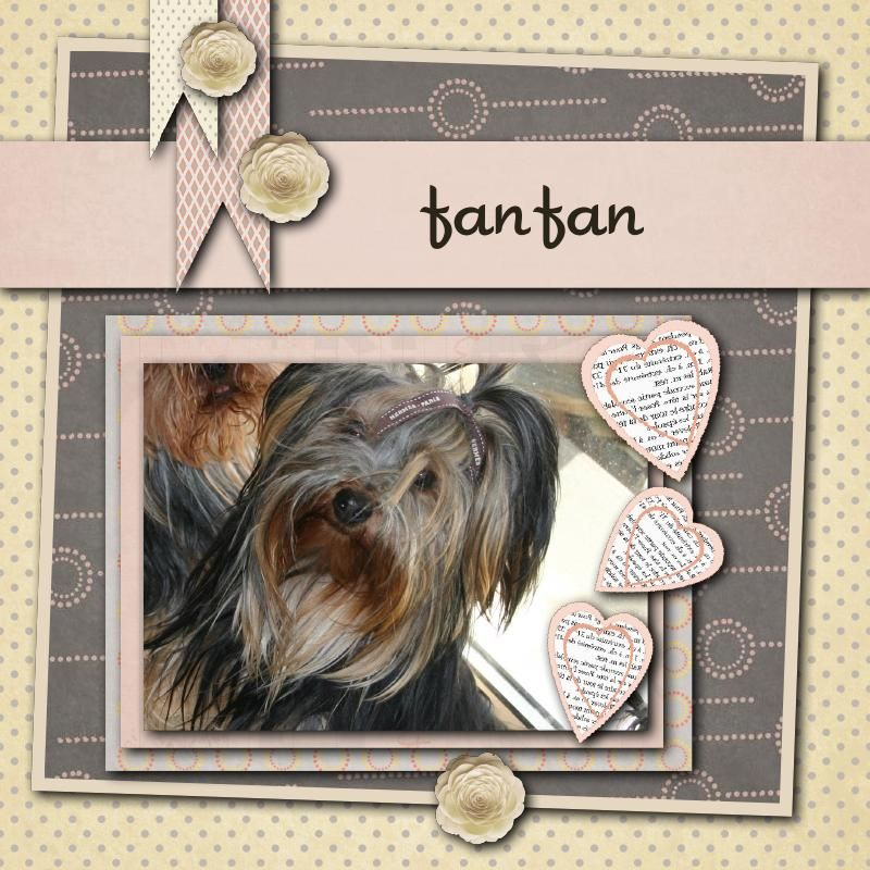 Fanfan11