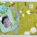 Carte Chris