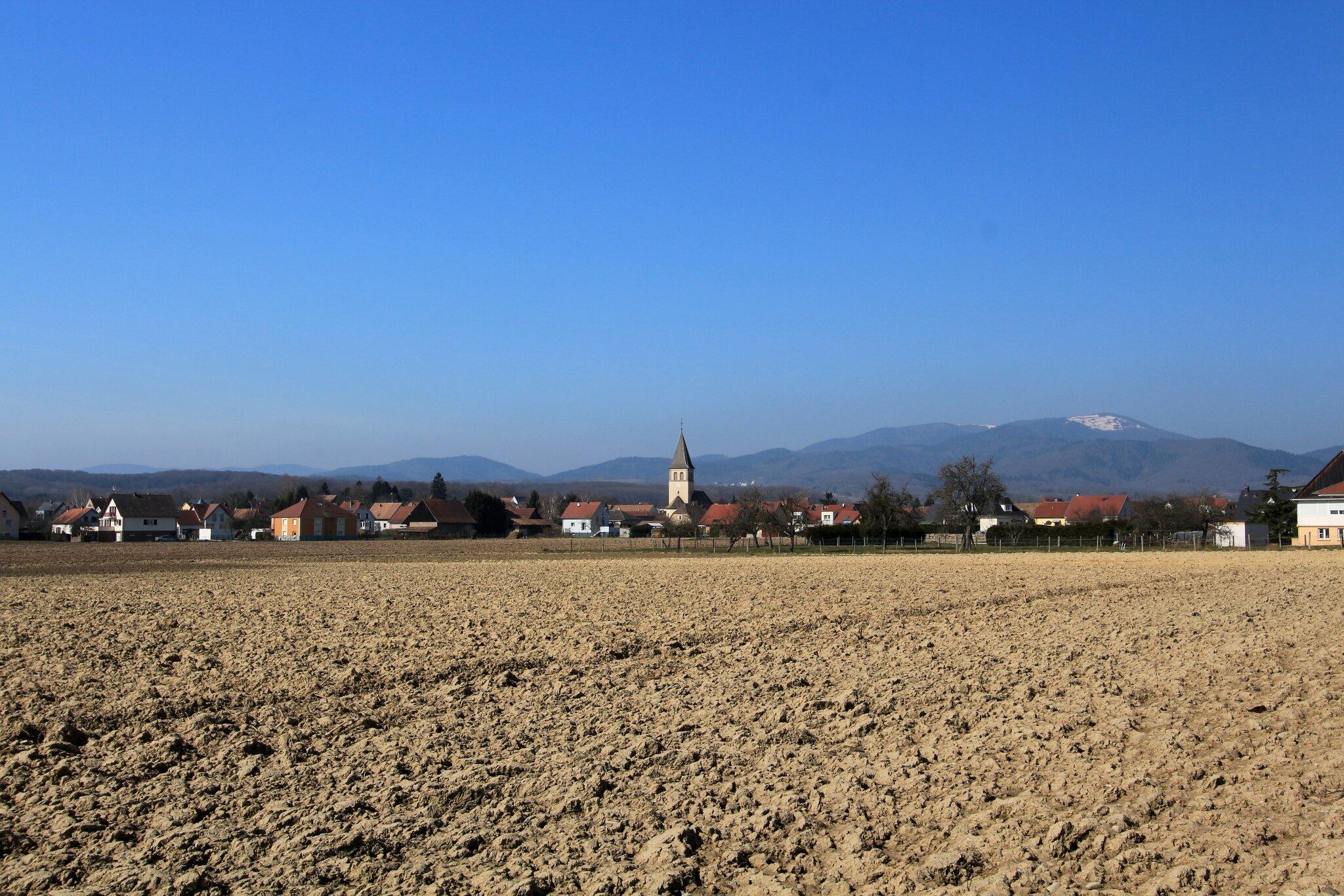 Aspach-le-Haut (1)