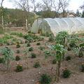 2008 07 24 Mon jardin
