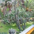 jardin Majorelle, bassin et fontaines 4