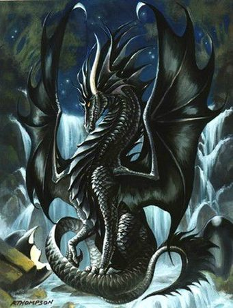 dragon37