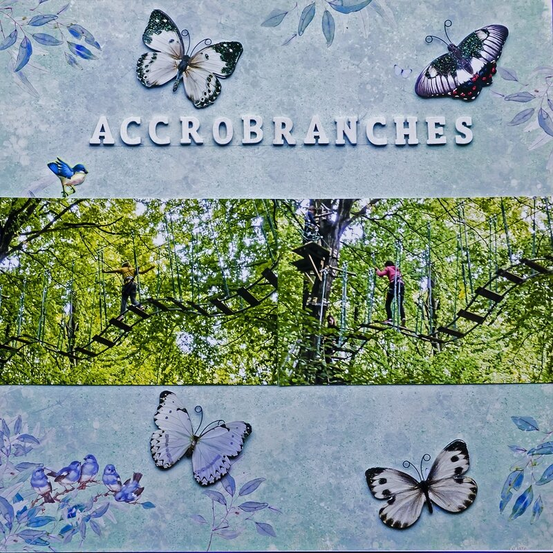 accrobranches 2
