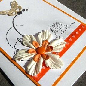 fleur_orange_detail