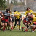66IMG_1072T
