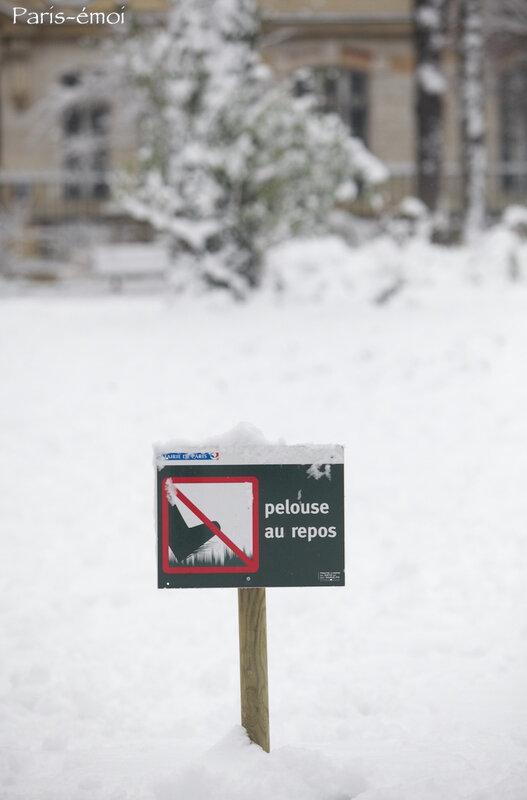 neige epinettes 0920nA