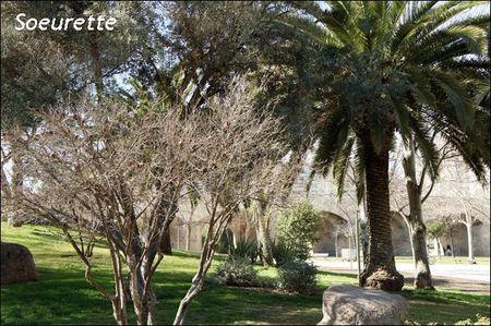 jardins du Turia 2
