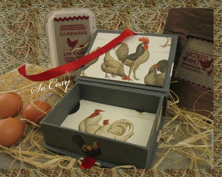 sofie_so_cosy_poules_point_de_croix_cartonnage_boite_poules