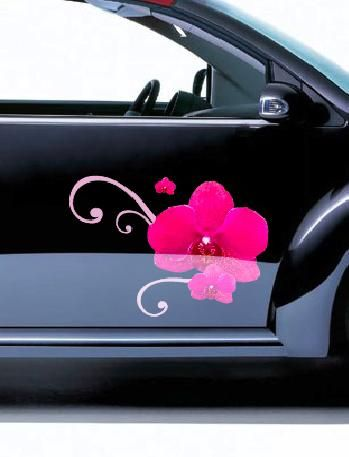 Orchid - Photo De Photos De Stickers Voiture Posés - En Avant Les