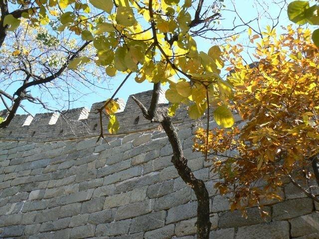 Aperçu des remparts de la Muraille de Chine