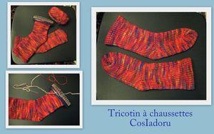 Tricotin à chaussettes3