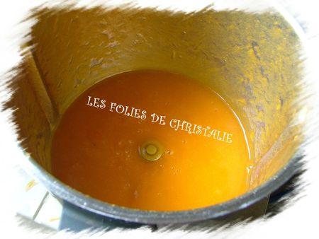 Coulis d'abricots 4