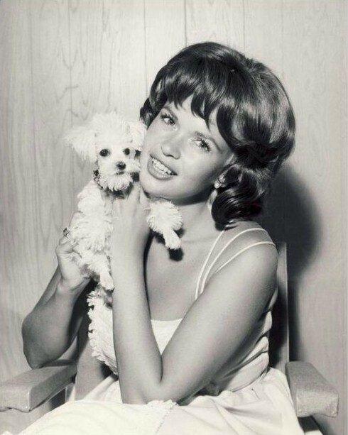 jayne-1961-07-dog-1