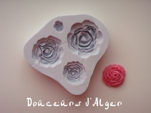moule silicone roses