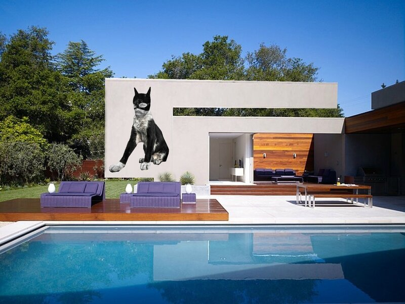 nice-outdoor-swimming-pool-with-violet-chair-and-white-wall-also-trees