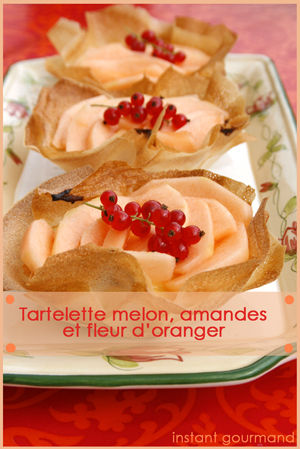TARTELETTE_MELON