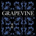 Grapevine - Kakusei ~10th Anniversary Special Package~