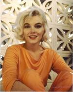 1962-06-tim_leimert_house-pucci_orange-by_barris-043-1a