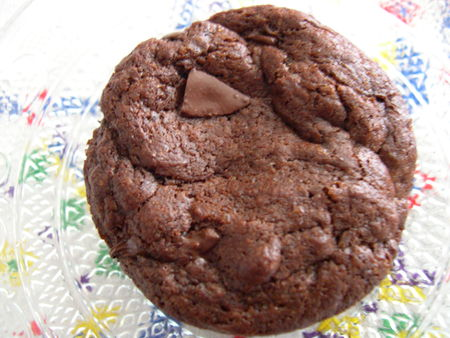 cookies_fort_en_chocolat_040