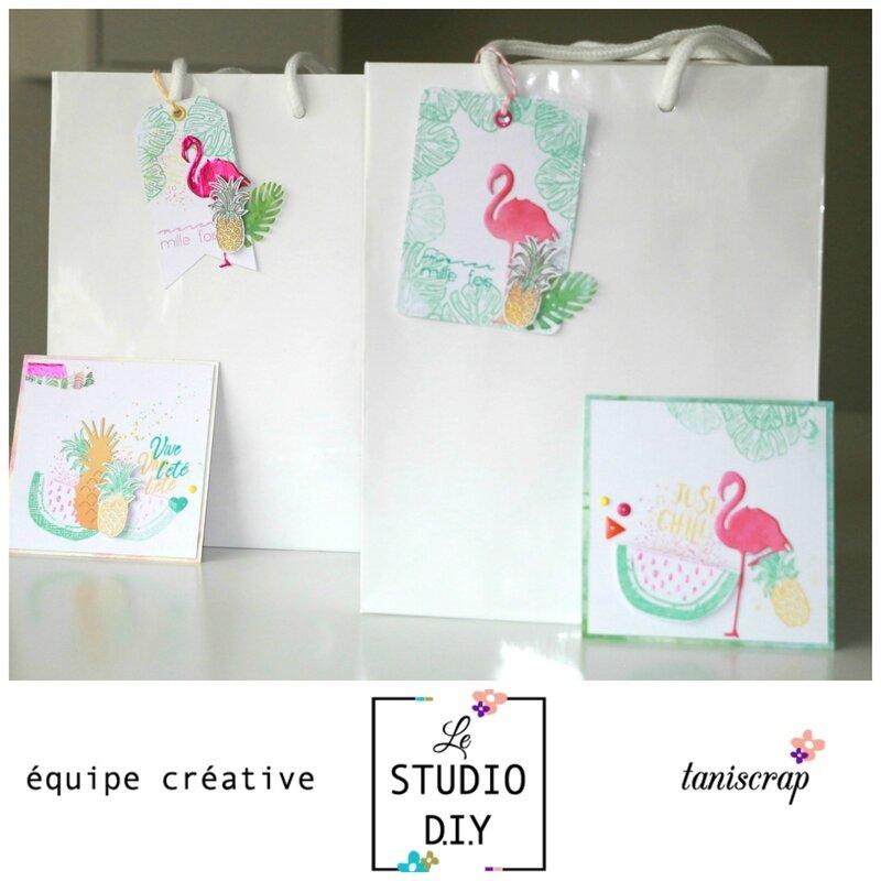 Ensemble carte et tag cadeau (1)