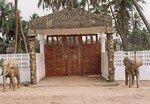 Enr_e_Temple