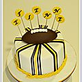 cake_minnesota_vikings_1