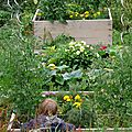 Potager en carr_02