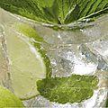 cocktail citron vert-menthe