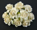 Roses 3 cm ivoire blanches