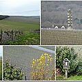Dans les vignes, fin mars