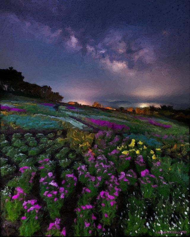 fleurs_lactées_1024_cdp_cb