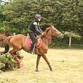 équitation de pleine nature - rallye équestre (88)
