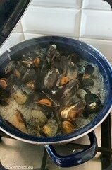 Moules-curry-vert-11