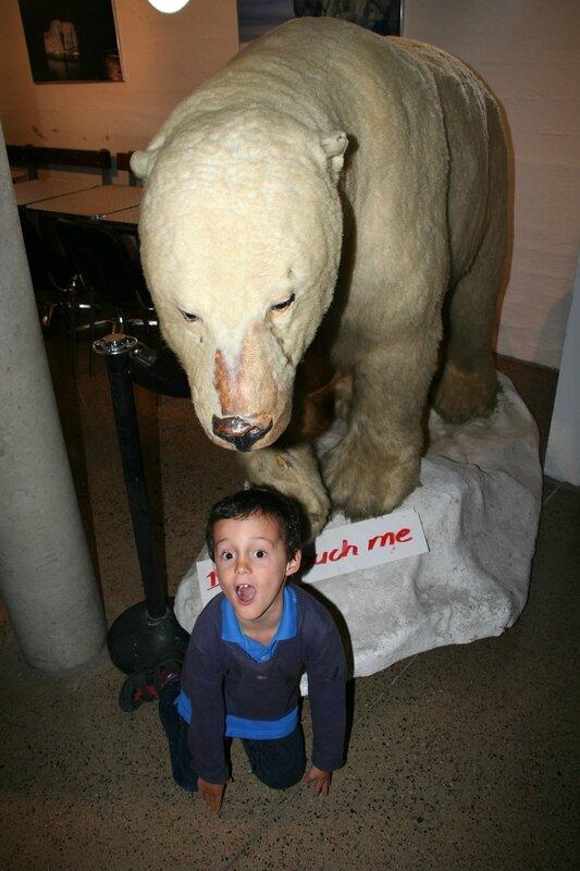 l'ours polaire et Melchior