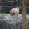 cdv_20130315_17_zoo