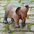 5. Les éléphants